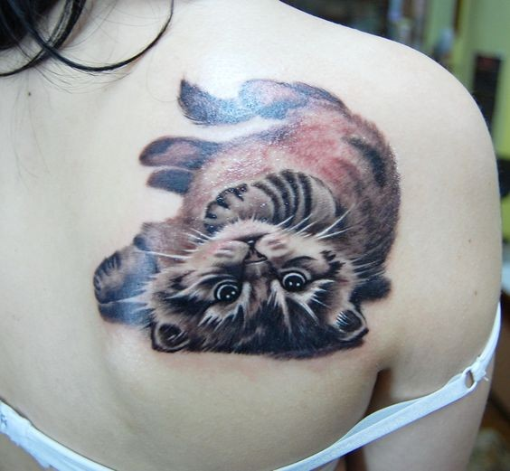 3D style very detailed scapular tattoo of funny cat