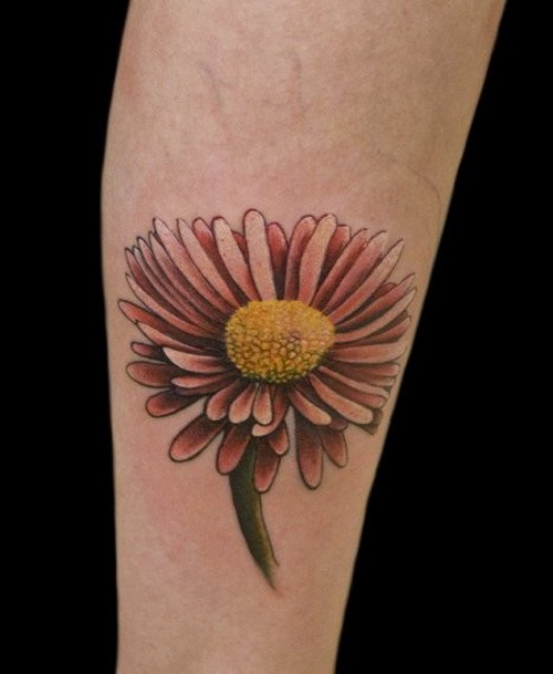 Amazing girly daisy flower tattoo on arm