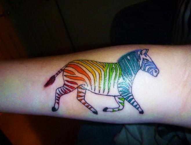 Amuse vivid-colored zebra tattoo on arm