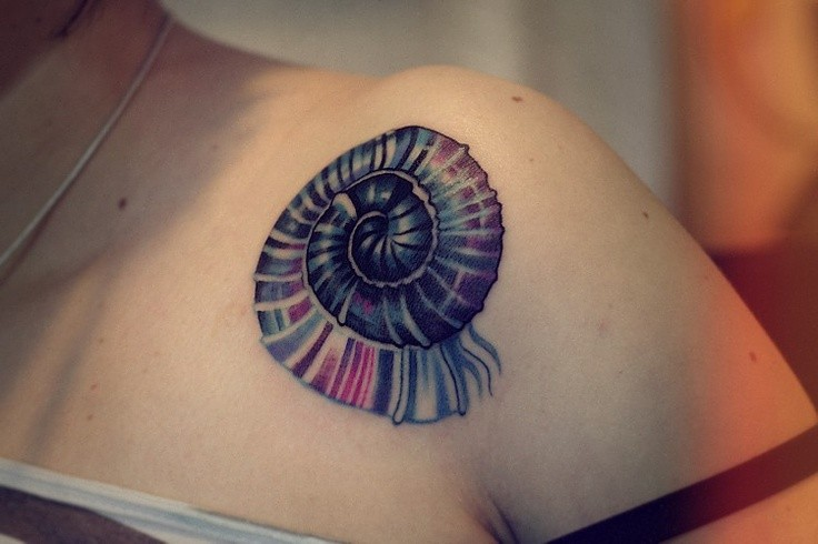Art style colored shoulder tattoo of small cute nautilus