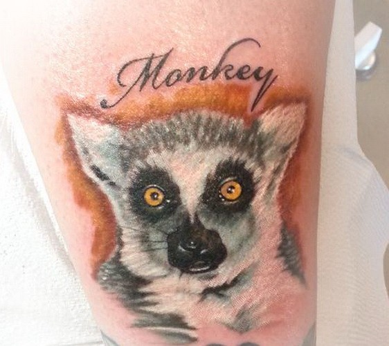 Great colorful lemur head with word quote tattoo on shin