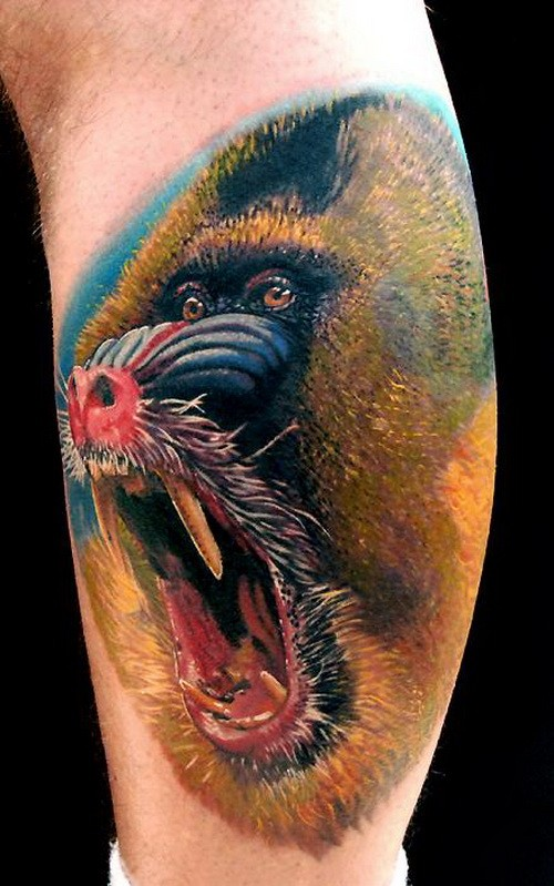 Realistic color-ink baboon portrait tattoo on arm