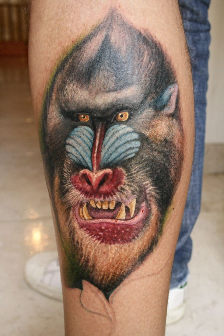 Scary color-ink baboon head tattoo on arm