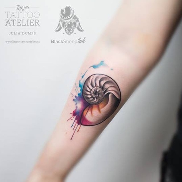 Small cute looking colored nautilus shell tattoo on forearm