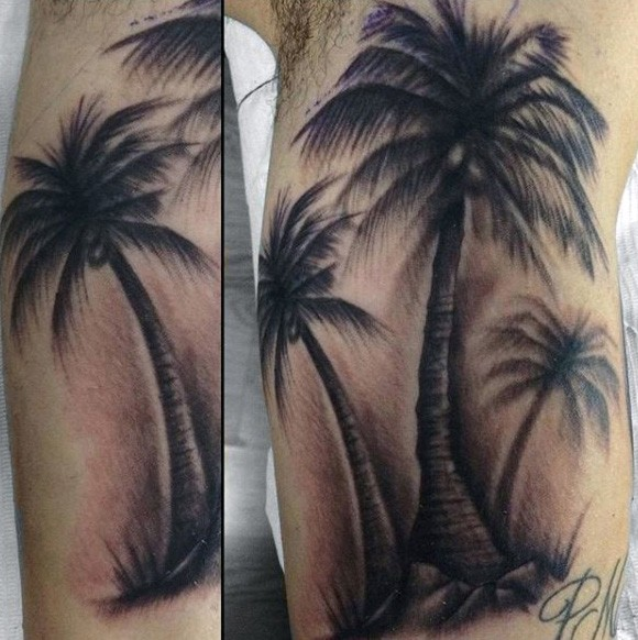 Big natural looking palm trees tattoo on arm