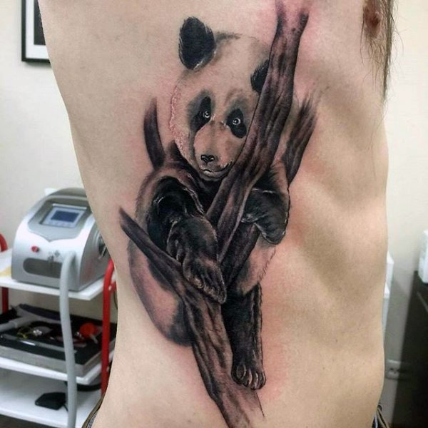 Black and gray style colored side tattoo of panda bear on tree