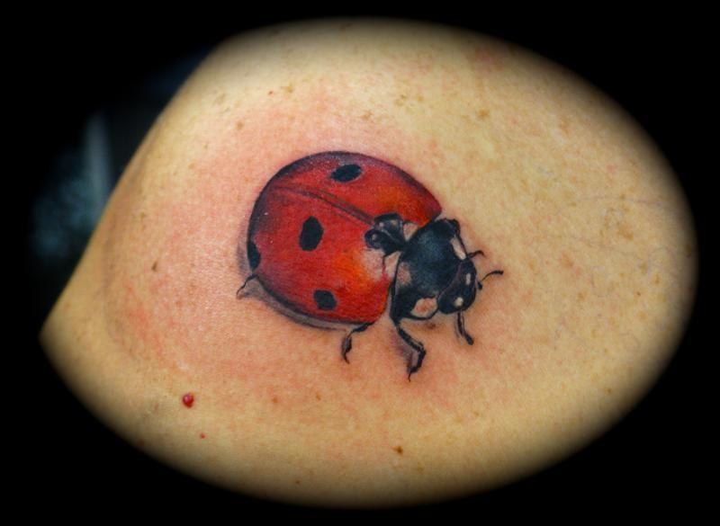 Coloured nice ladybug tattoo