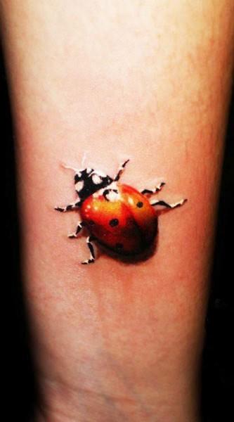 Crawling ladybug tattoo on arm