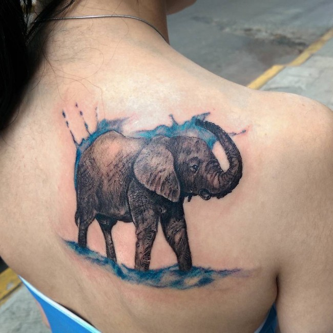 Cute looking colored scapular tattoo of elephant with water