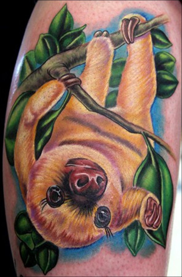 Cute sloth on a branch tattoo