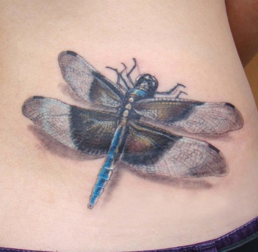 Great realistic dragonfly tattoo on ribs