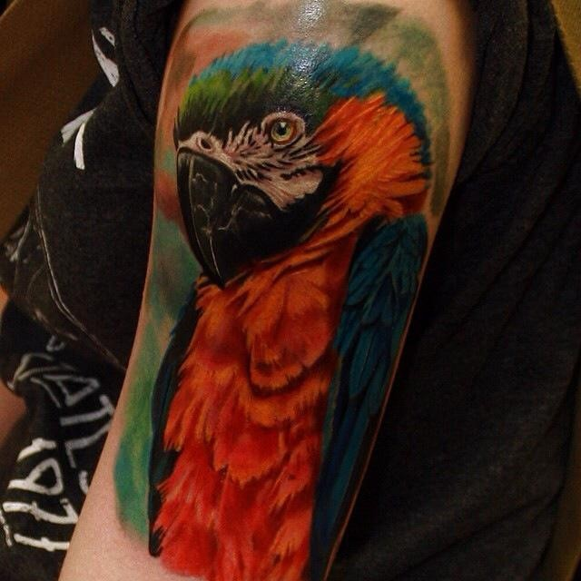Lifelike colored shoulder tattoo of very detailed parrot