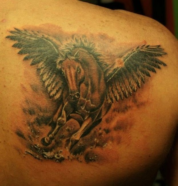 Lovely colorful pegasus tattoo on back