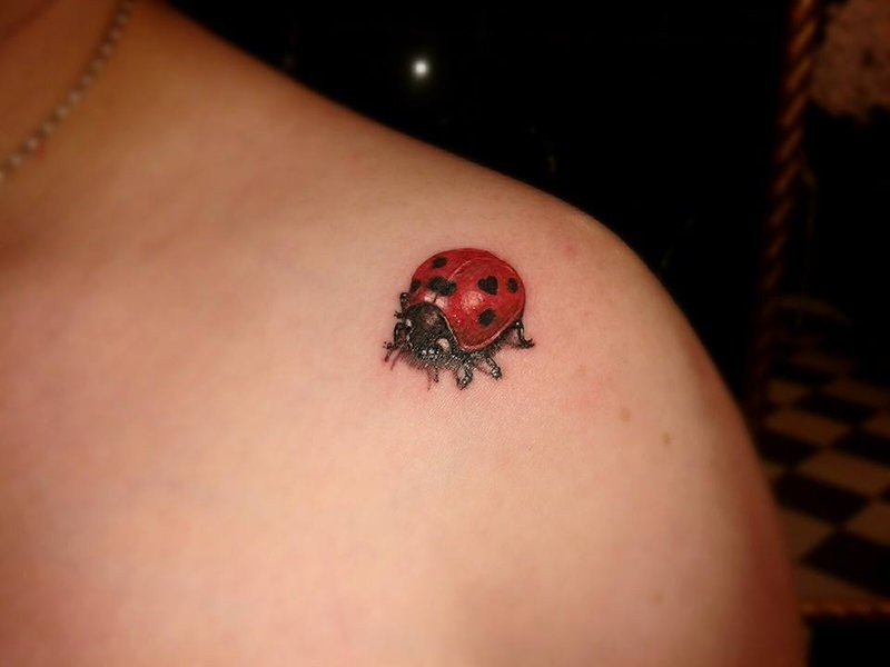 Lovely realistic ladybug tattoo on shoulder