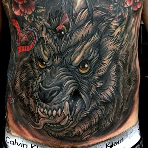 Muzzle of a wolf on his stomach