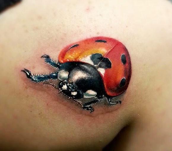 Photo Realistic ladybug tattoo on shoulder