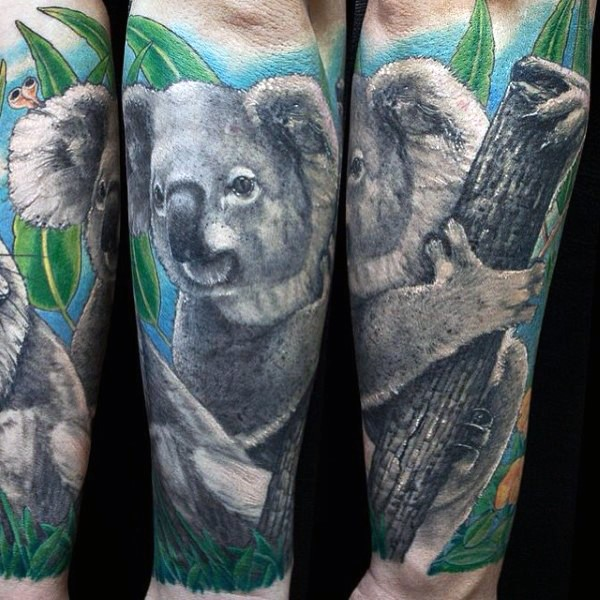 Picture like colored arm tattoo of koala bear with tree branch and leaves
