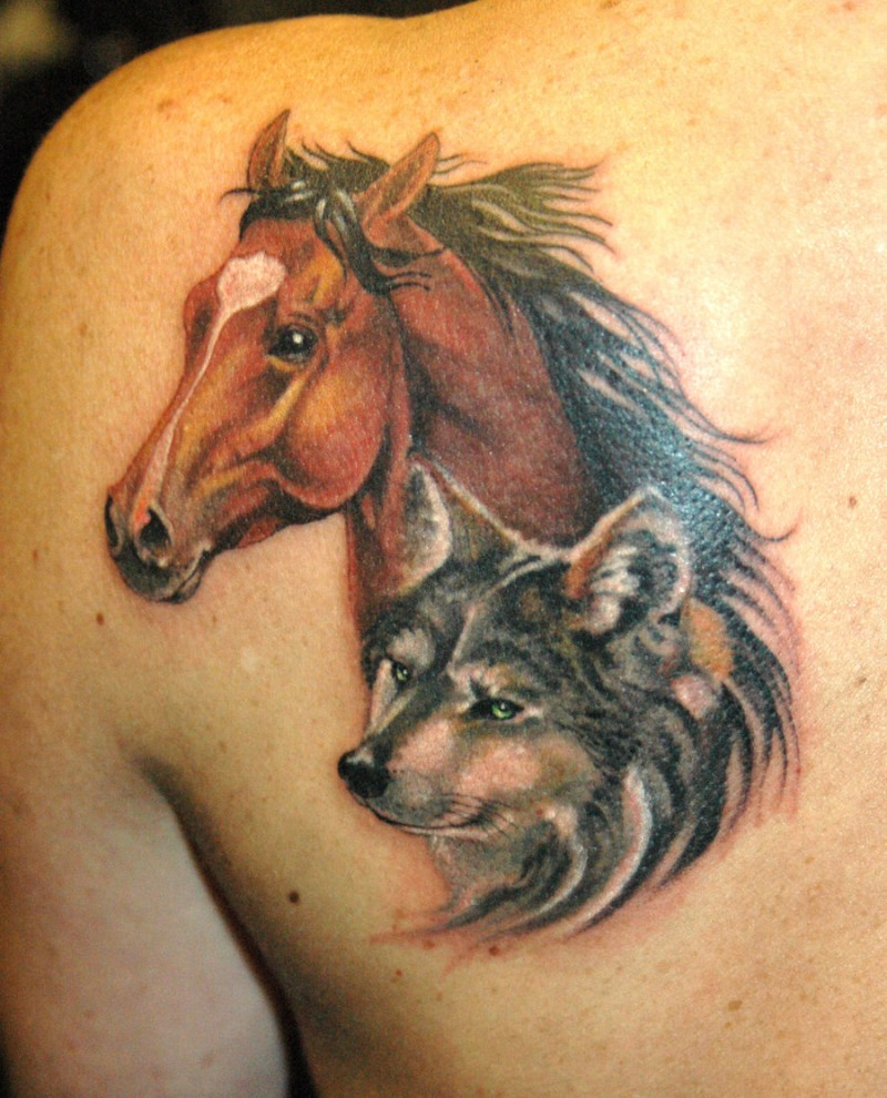 Indian with eagle and wolf tattoo on shoulder tattooimages biz - Realistic Portrait Horse And Wolf Face Tattoo