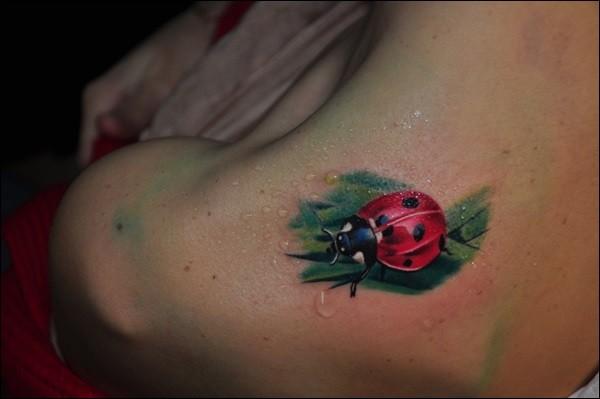 Super realistic ladybug on a leaf of grass tattoo on shoulder blade