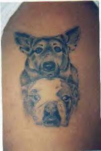 Collie and bulldog tattoo