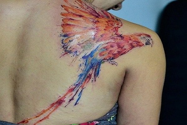 Wonderful flying multicolored parrot tattoo on shoulder blade in watercolor style