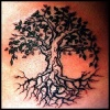 The main meaning of all the tree tattoos
