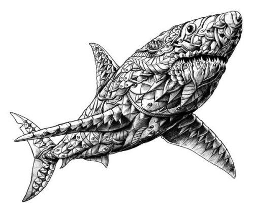 3d grey ornate shark tattoo design
