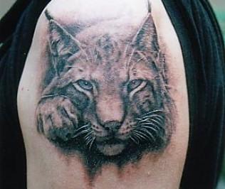come bel gatto grande selvatico dipinto in 3D tatuaggio su spalla
