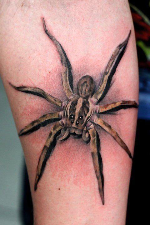 3d spider tattoo on leg