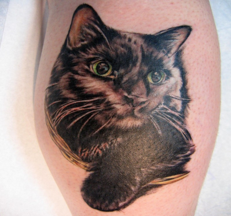 3D style amazing looking tattoo of gorgeous cat