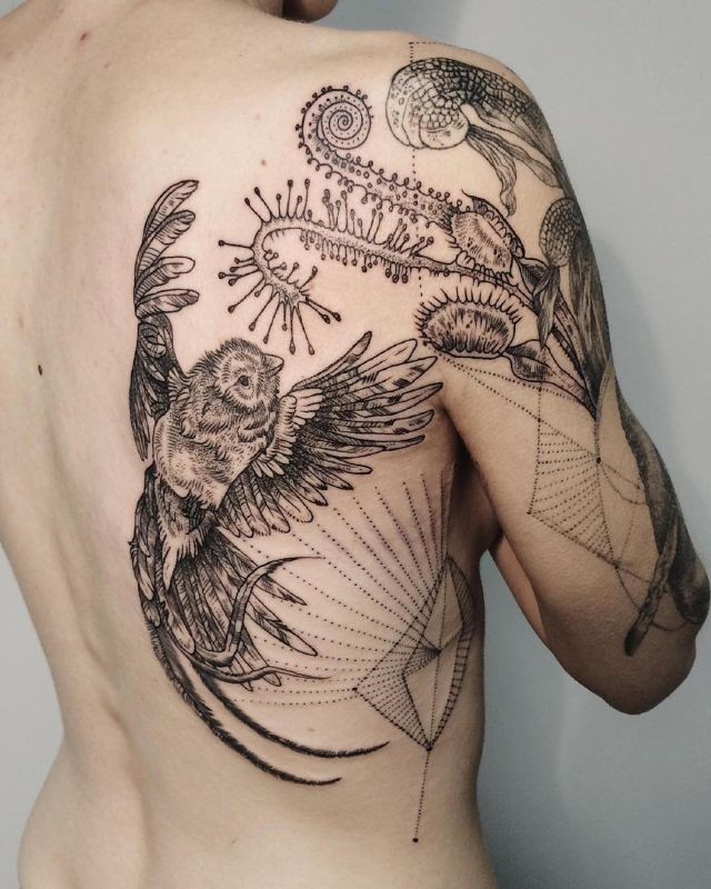 3D style painted natural looking black ink bird and various plants tattoo on shoulder and back combined with geometrical figures