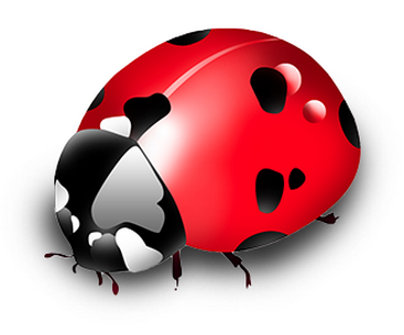 Affectionate red-and-black 3D ladybug tattoo design