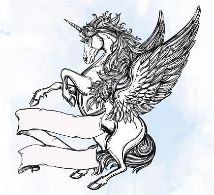 Amazing Black And White Flying Unicorn Pegasus With