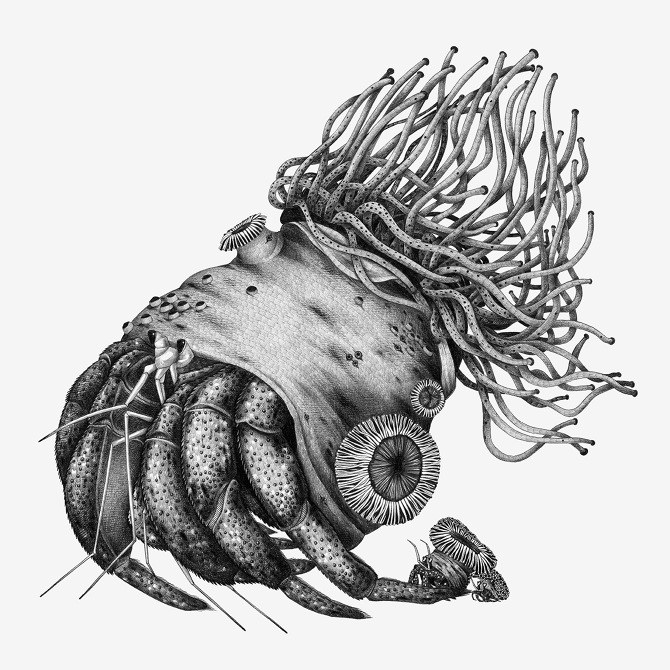 Amazing black-and-white hermit crab with feelers tattoo design
