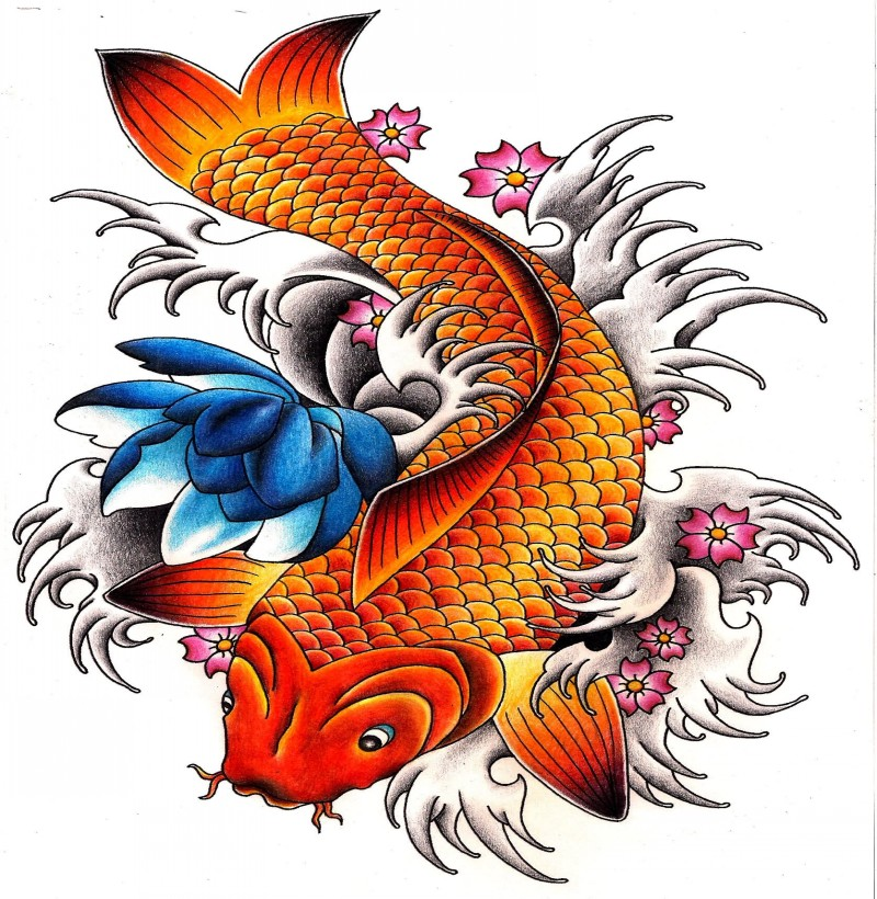 Carp Fish Tattoo Images Designs: Amazing Carp Fish With Blue Lotus And Cherry Flowers