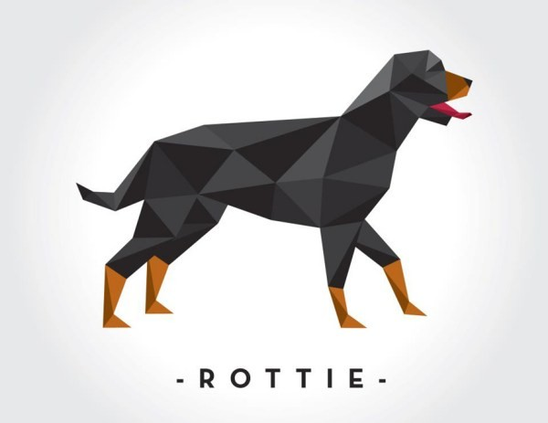 Amazing geometric rottweiler in full growth tattoo design