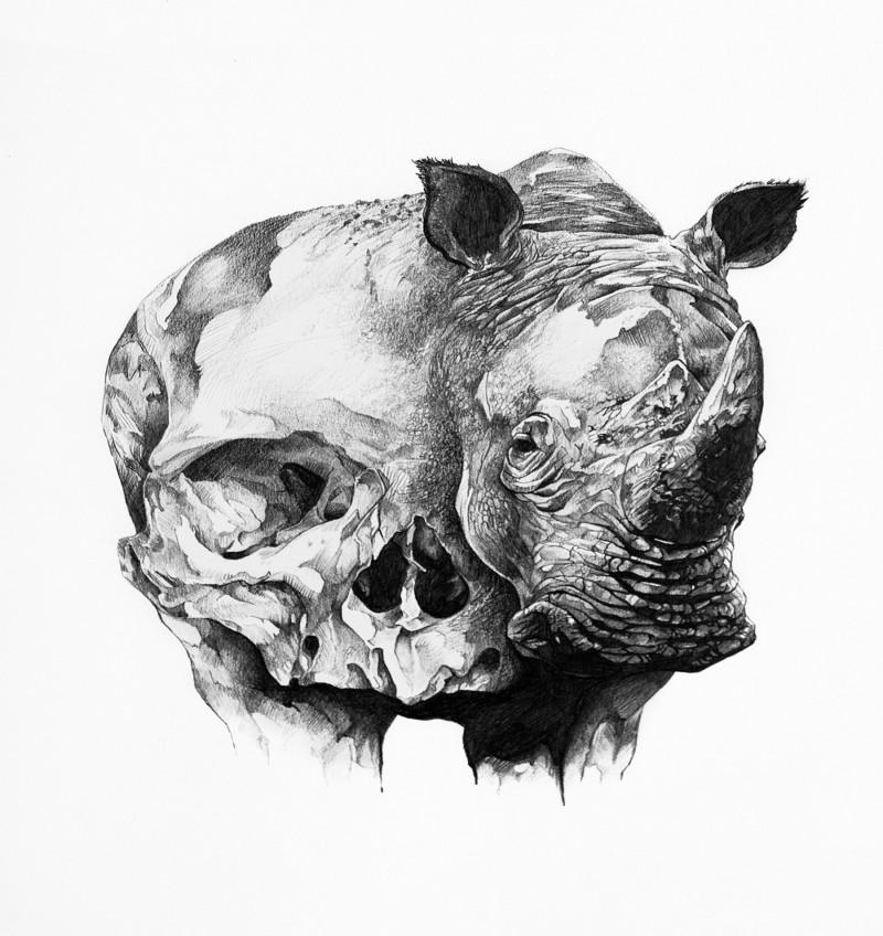 Amazing grey-ink half-skull half-rhino tattoo design