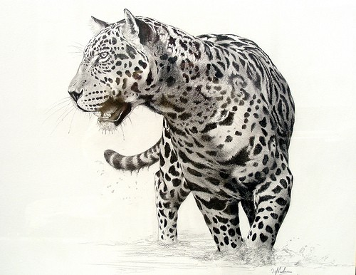 Amazing grey-ink jaguar in full size tattoo design