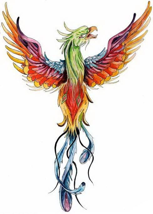 Amazing multicolor phoenix bird turn its back tattoo design