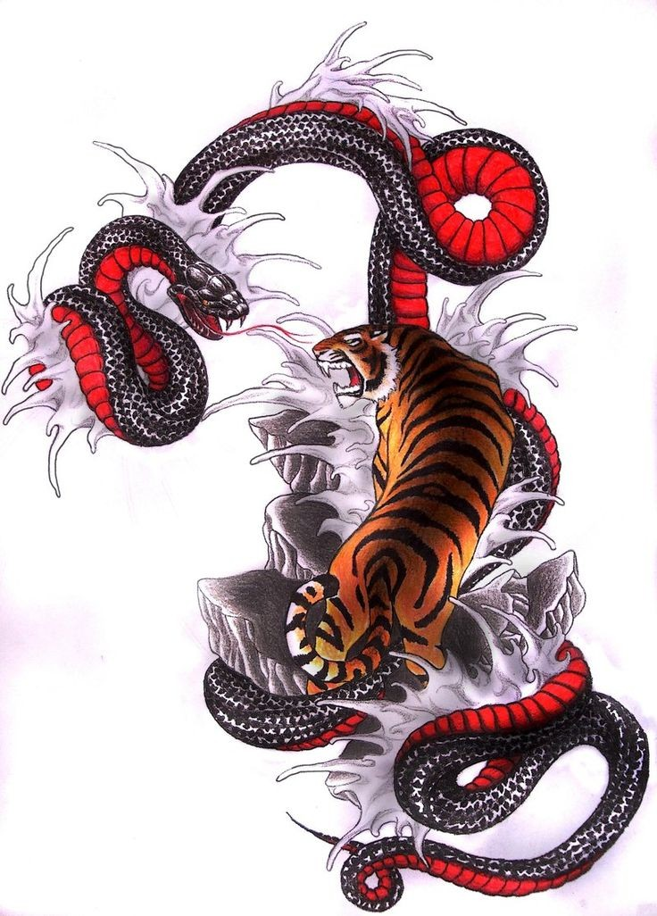 Amazing strong chinese tiger and huge red-belly snake tattoo design