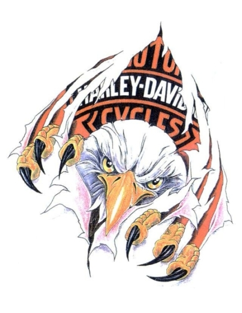 American harley davidson eagle tearing white background tattoo design