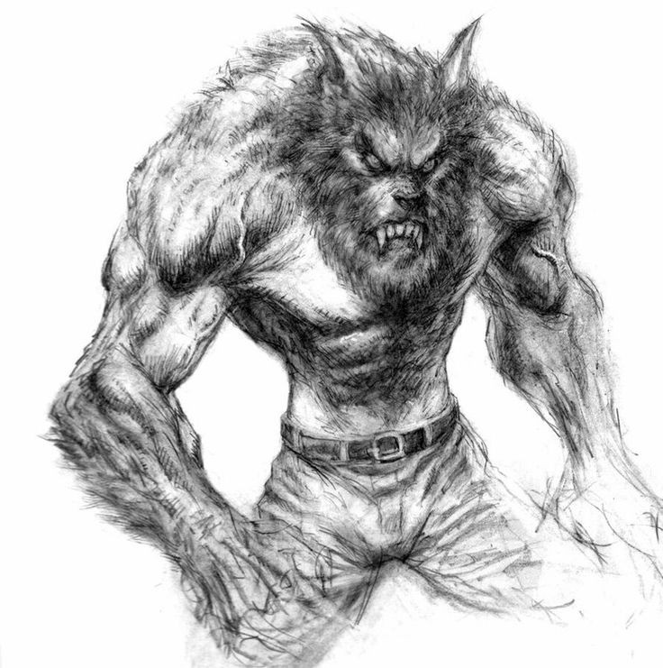 Angry grey-ink fluffy werewolf in trousers tattoo design
