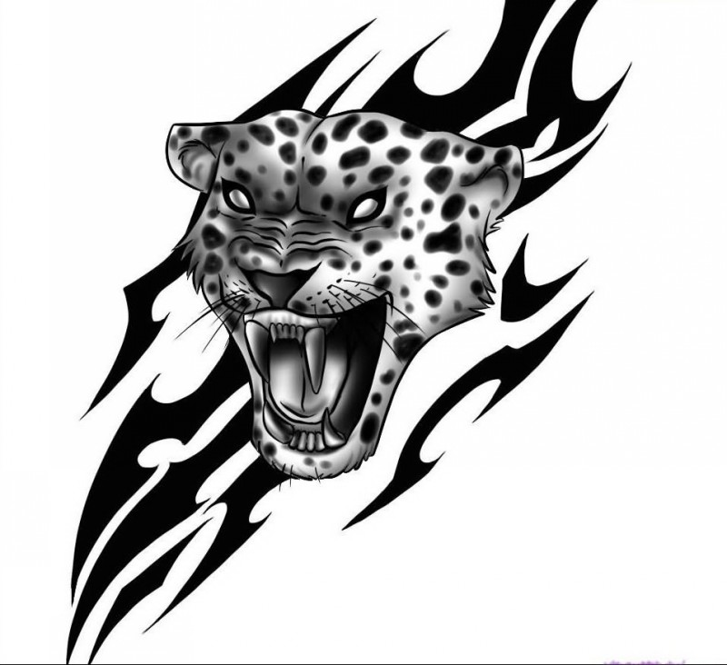 Angry grey jaguar head on tribal background tattoo design