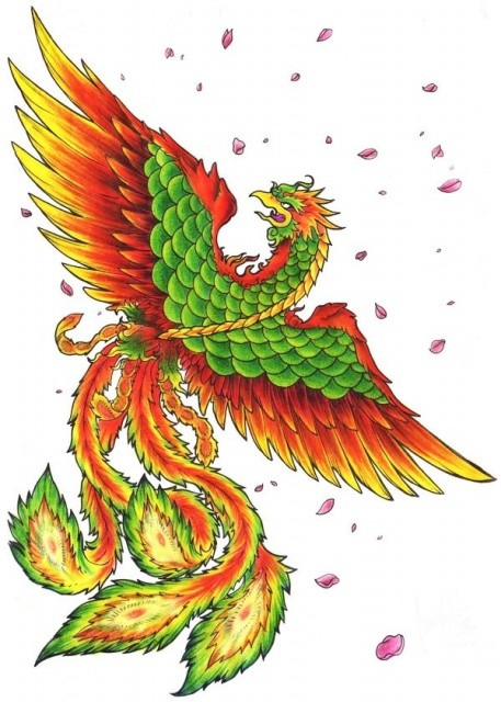 Angry orange-and-green crying phoenix and falling cherry petals tattoo design