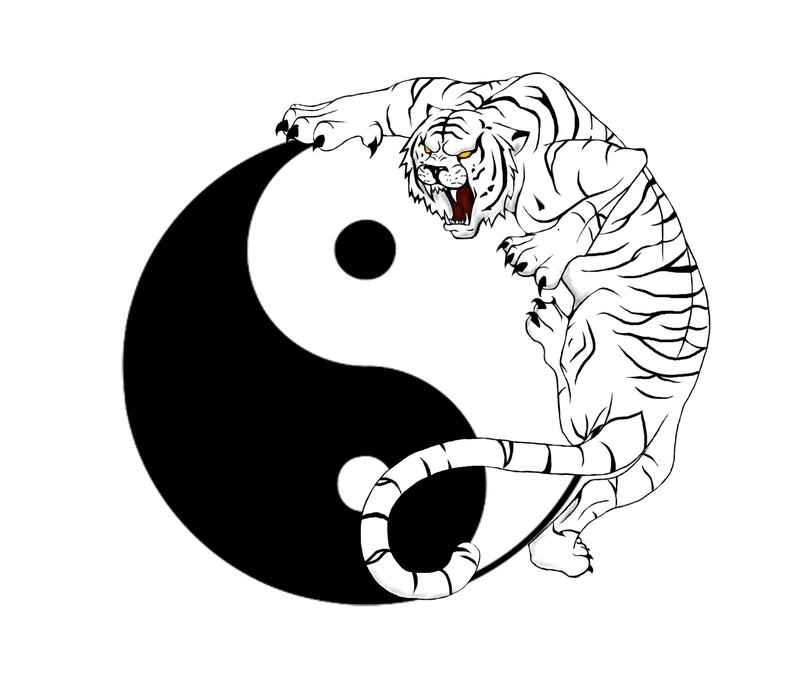 Angry white tiger climbing on yin yang sign tattoo design by Big Cats