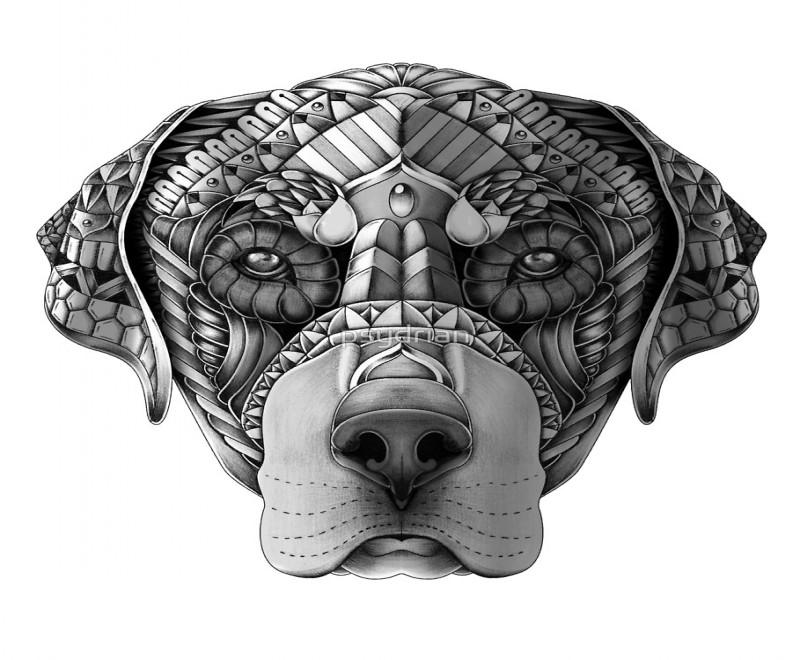 Attractive grey armoured rottweiler head tattoo design