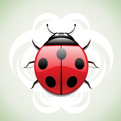 Attractive red-and-black ladybug on cloudy background tattoo design