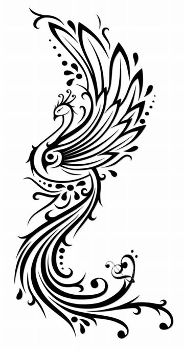 Attractive tribal peacock tattoo design