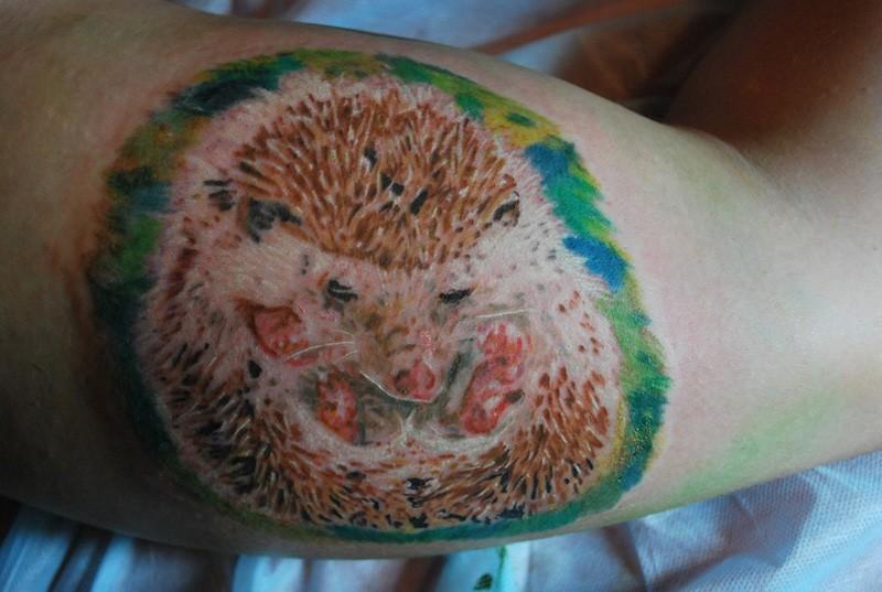 Awesome color-ink hedgehog tattoo on shoulder