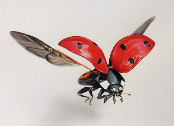 Awesome colorful flying ladybug tattoo design